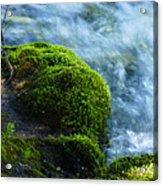 On The Edge 2 Acrylic Print