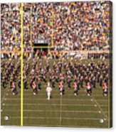 On The Field Acrylic Print by David Bearden