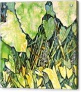 On The Kinchafoonee Acrylic Print