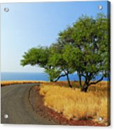 On The Road To Lapakahi Acrylic Print