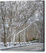 On The Road To Woods Hole Acrylic Print