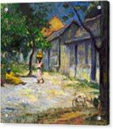Village In Martinique Acrylic Print