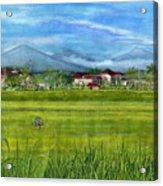 On The Way To Ubud 3 Bali Indonesia Acrylic Print