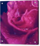 Once You Know What Love Is Acrylic Print