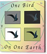 One Bird Poster And Greeting Card V1 Acrylic Print