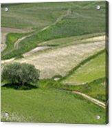 Parko Nazionale Dei Monti Sibillini, Italy 8 Acrylic Print