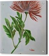 One Flower Acrylic Print