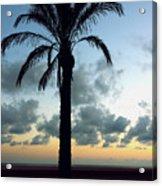 One Palm Acrylic Print