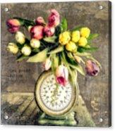 One Pound Tulips Acrylic Print