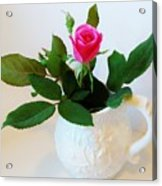 One Sweet Rose Acrylic Print