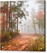 One Way Acrylic Print by Debra and Dave Vanderlaan