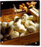 Onions Blancs Frais Acrylic Print