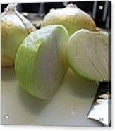 Onions I Acrylic Print