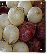 Onions IIi Acrylic Print