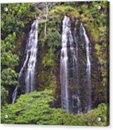 Opaekaa Falls - Kauai Acrylic Print
