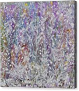 Opalescent Acrylic Print by Don  Wright