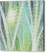 Opalescent Twilight I Acrylic Print
