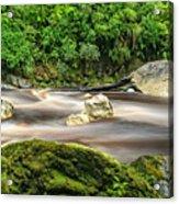 Oparara River Acrylic Print