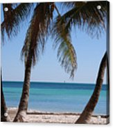 Open Beach View Acrylic Print
