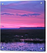 Open Marsh Acrylic Print