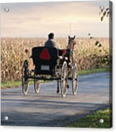 Open Road Open Buggy Acrylic Print by David Arment