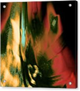 Or This Because Your Moralized Persona Reflects Equal Rationalized Indulgence 2015 Acrylic Print