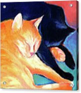 Orange And Black Tabby Cats Sleeping Acrylic Print