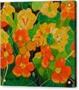 Orange And Yellow Days Acrylic Print