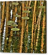 Orange Bamboo Abstract, Reflection On Water Acrylic Print