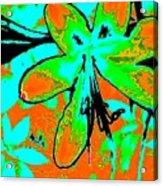 Orange Burst Flower Acrylic Print
