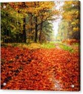 Orange Carpet Acrylic Print
