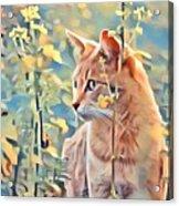 Orange Cat In Field Of Yellow Flowers Acrylic Print