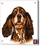 Orange Cocker Spaniel Pop Art - 8249 - Wb Acrylic Print