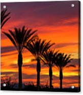Orange Dream Palm Sunset  Acrylic Print