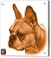 Orange French Bulldog Pop Art - 0755 Wb Acrylic Print