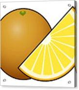 Orange Fruit Outlined Acrylic Print