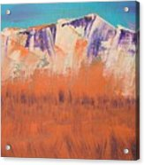 Orange Grass Acrylic Print