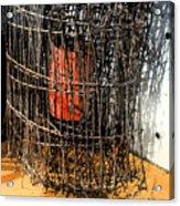 Orange In Wire Acrylic Print