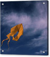 Orange Kite Acrylic Print