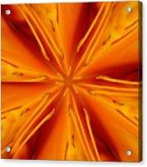 Orange Marmalade Acrylic Print