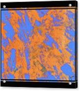 Orange On Blue Acrylic Print