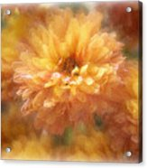 Orange Passion Acrylic Print