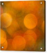 Orange Peel Acrylic Print