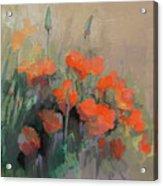 Orange Poppies Acrylic Print