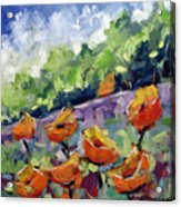 Orange Poppies Acrylic Print