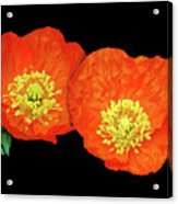 Orange Poppy Collage Cutout Acrylic Print