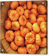 Orange Pumpkins Autumn Background. Acrylic Print