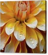 Orange Rain Acrylic Print