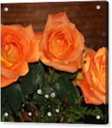 Orange Roses With Babysbreath Acrylic Print