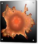 Orange Something.b. Acrylic Print